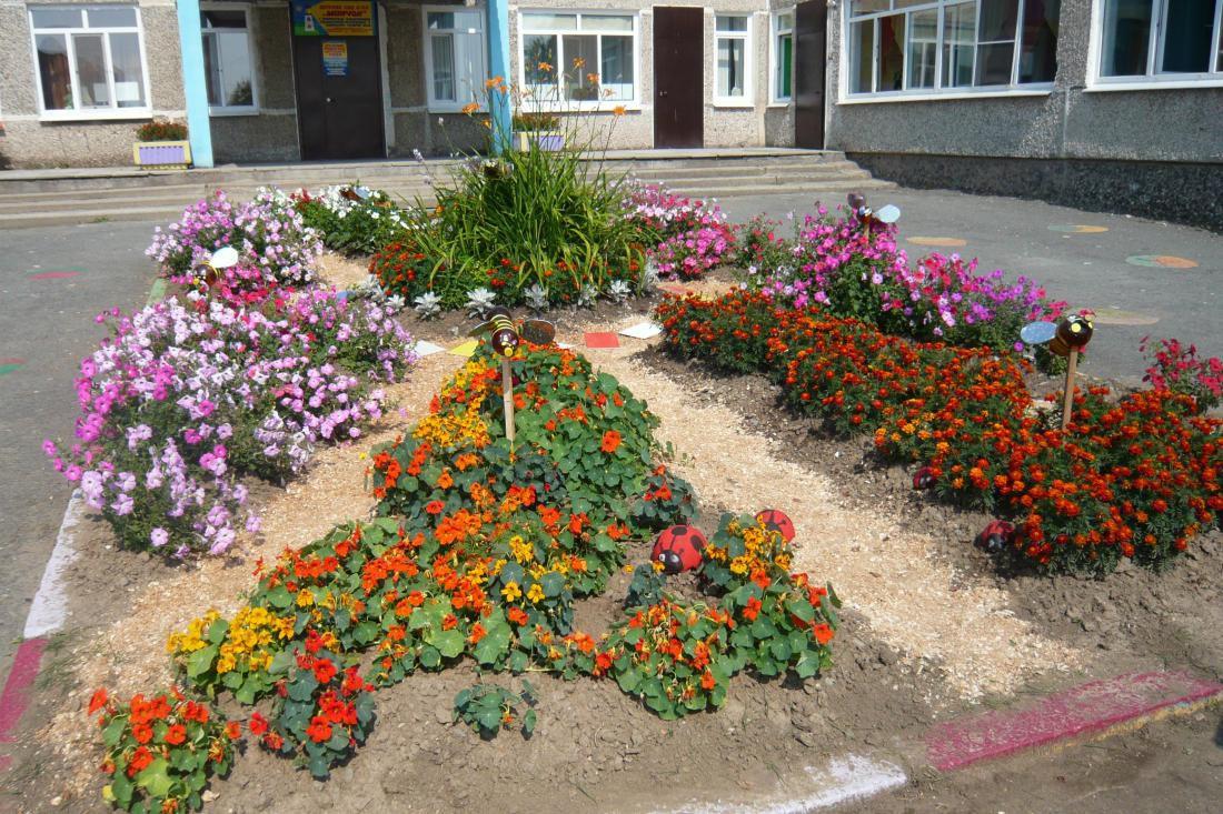 Цветы для клумбы на солнце фото